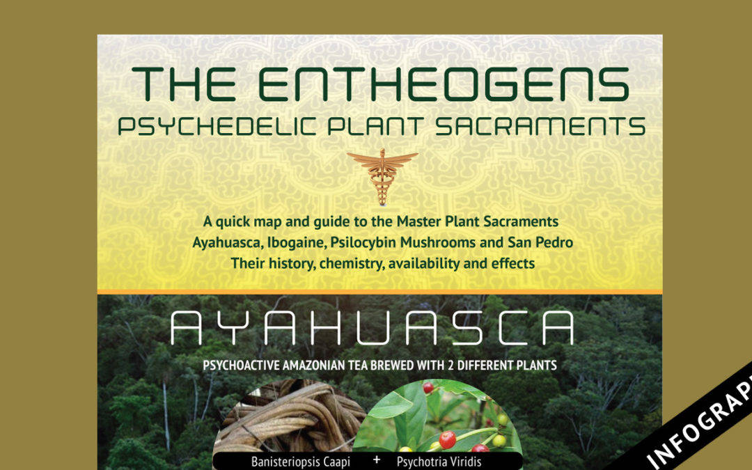 The Entheogens: Master Plant Sacraments Infographic