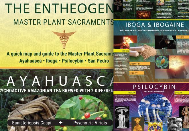 Entheogens: Master Plant Sacraments Poster